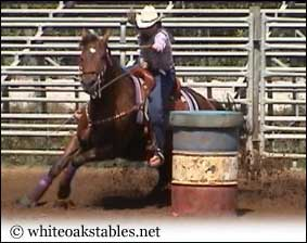 Kat and her barrel racing horse